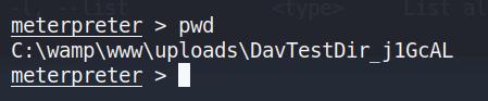 使用pwd查看当前路径